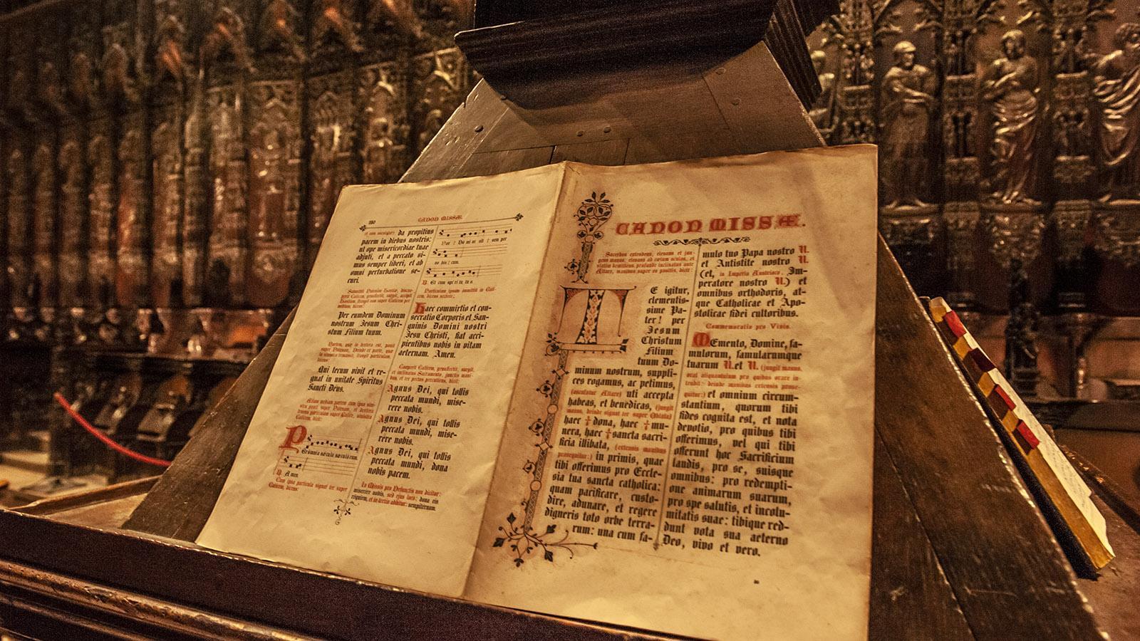 Auch: Im Chor der Kathedrale. Foto: Hilke Maunder