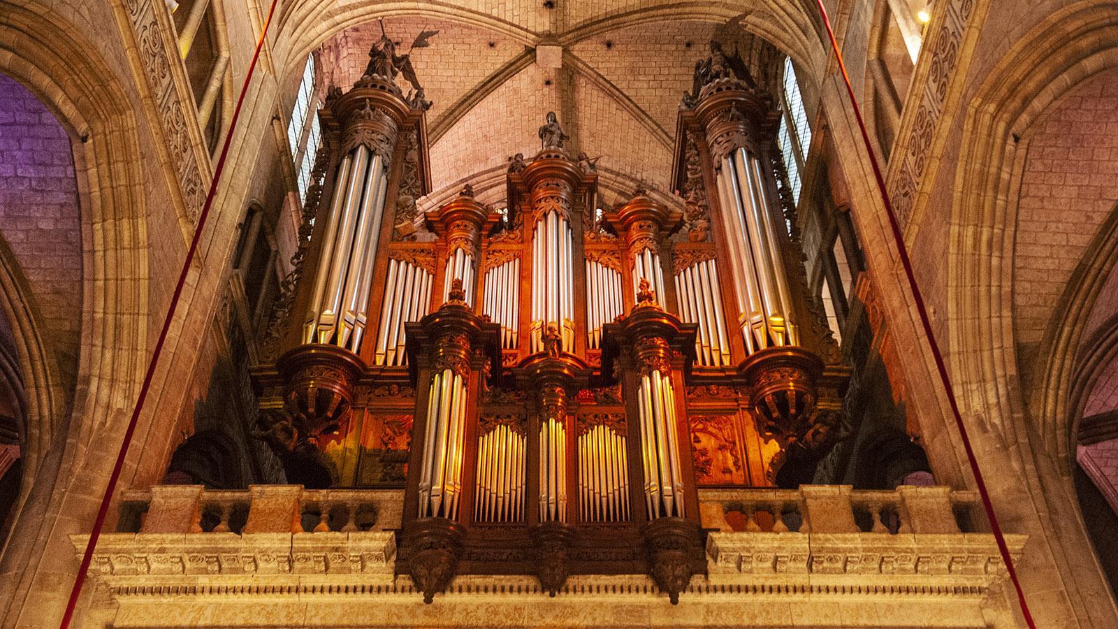 Beeindruckend: die Orgel der Kathedrale. Foto: Hilke Maunder