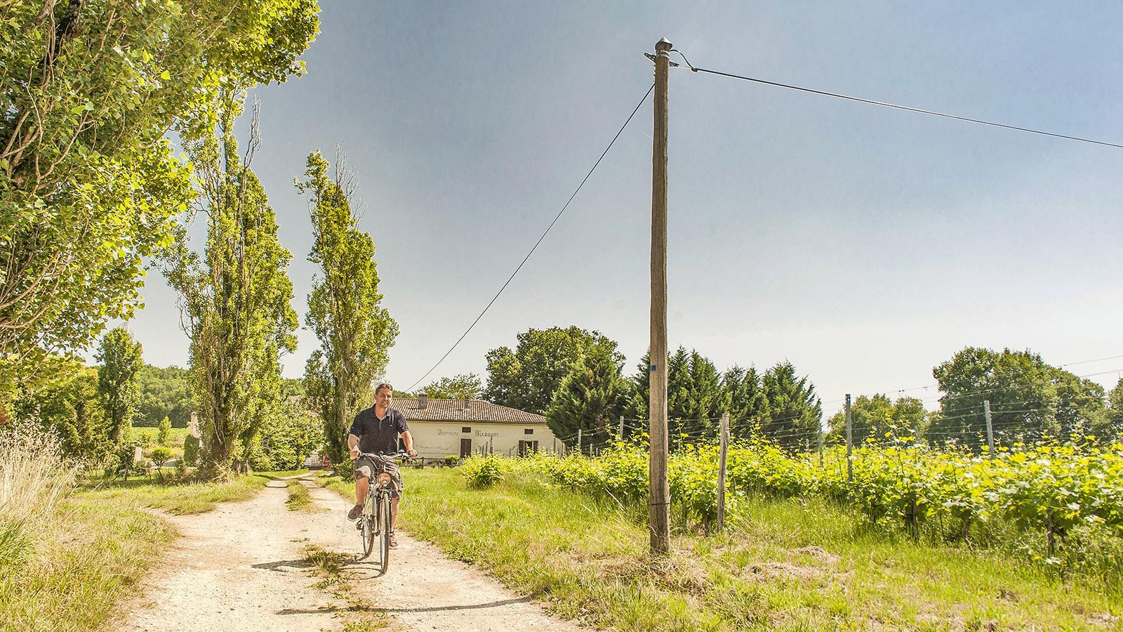Auf Landwegen abseits vom Verkehr durch wunderschöne Landschaften radeln - herrlich! Wie hier in Entre-deux-Mers. Foto: Hilke Maunder