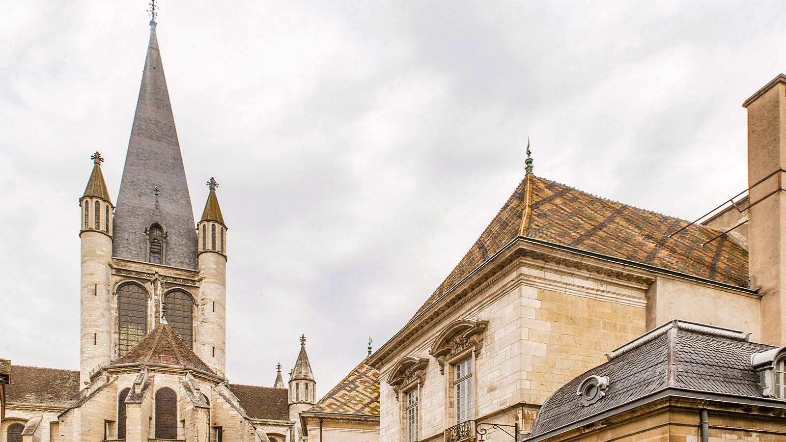 Dijon. Foto: Hilke Maunder
