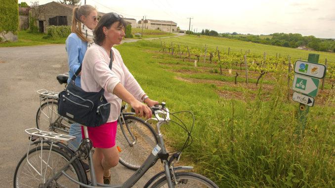 FlowVélo: Radeln an der Charente. Foto: Hilke Maunder