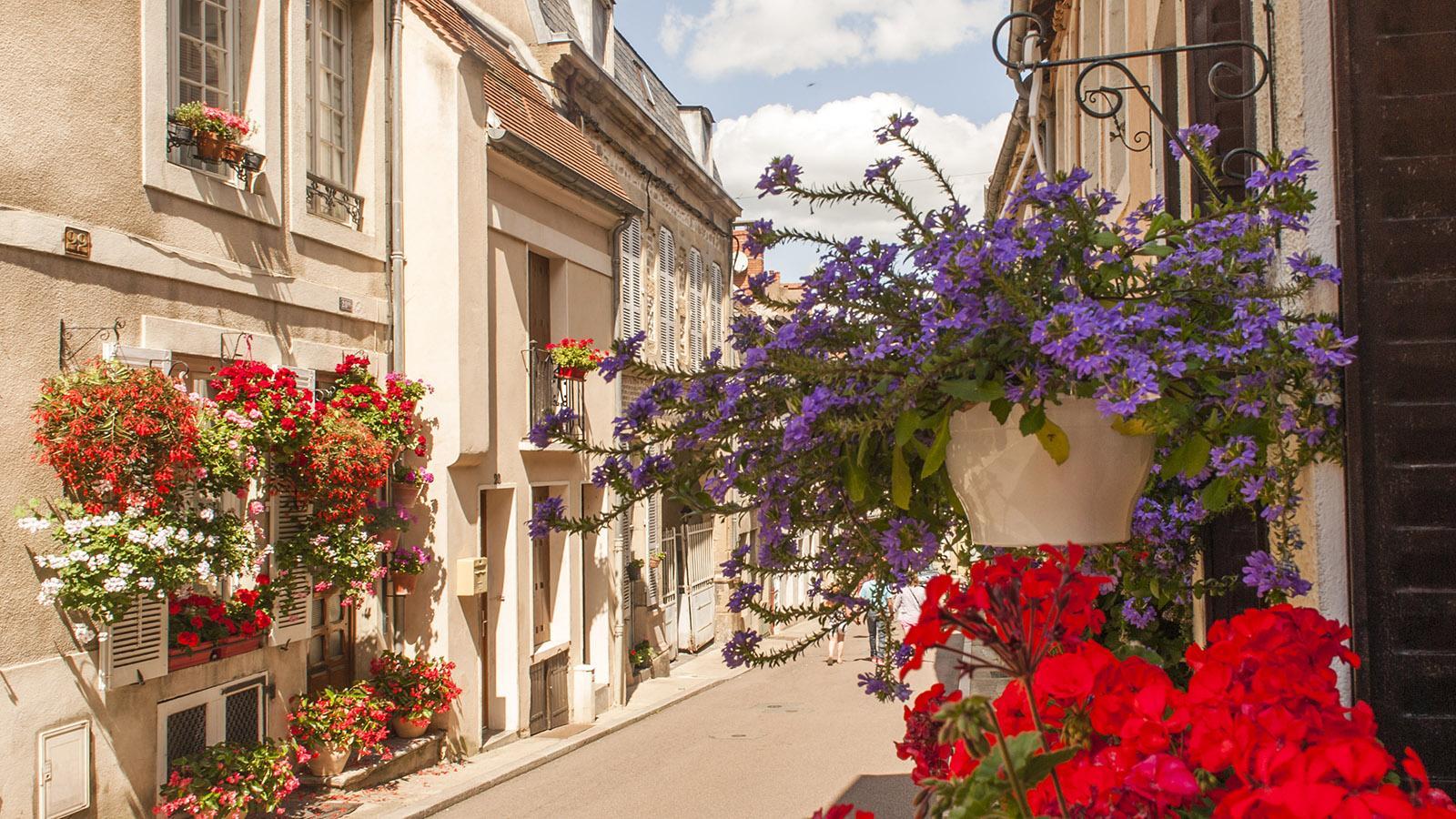 Blumengasse in Autun. Foto: Hilke Maunder
