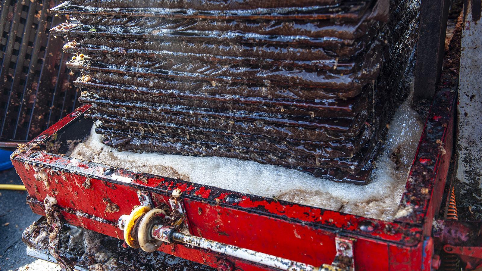 Mechanische Apfelpresse für die Cidre-Herstellung. Foto: Hilke Maunder