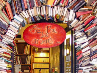 Lyon, Buchhandlung. Foto: Hilke Maunder