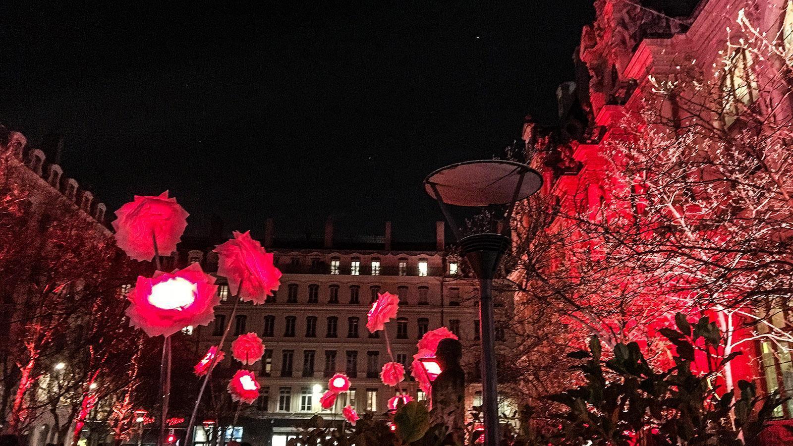 Fête des Lumières: leuchtende Schirme. Foto: Hilke Maunder
