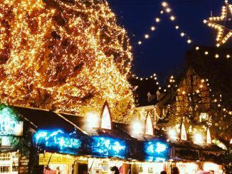 Weihnachten in Colmar: der Markt auf dem Dominikanerplatz. Foto: Hilke Maunder