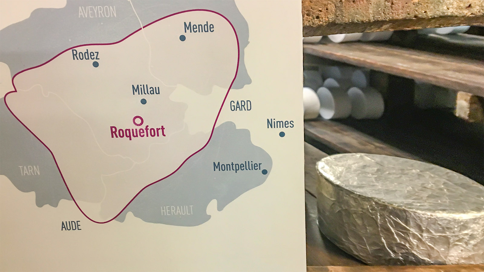 Nur mit der Schafsmilch aus dieser Region darf Roquefort-Käse hergestellt werden. Foto: Hilke Maunder