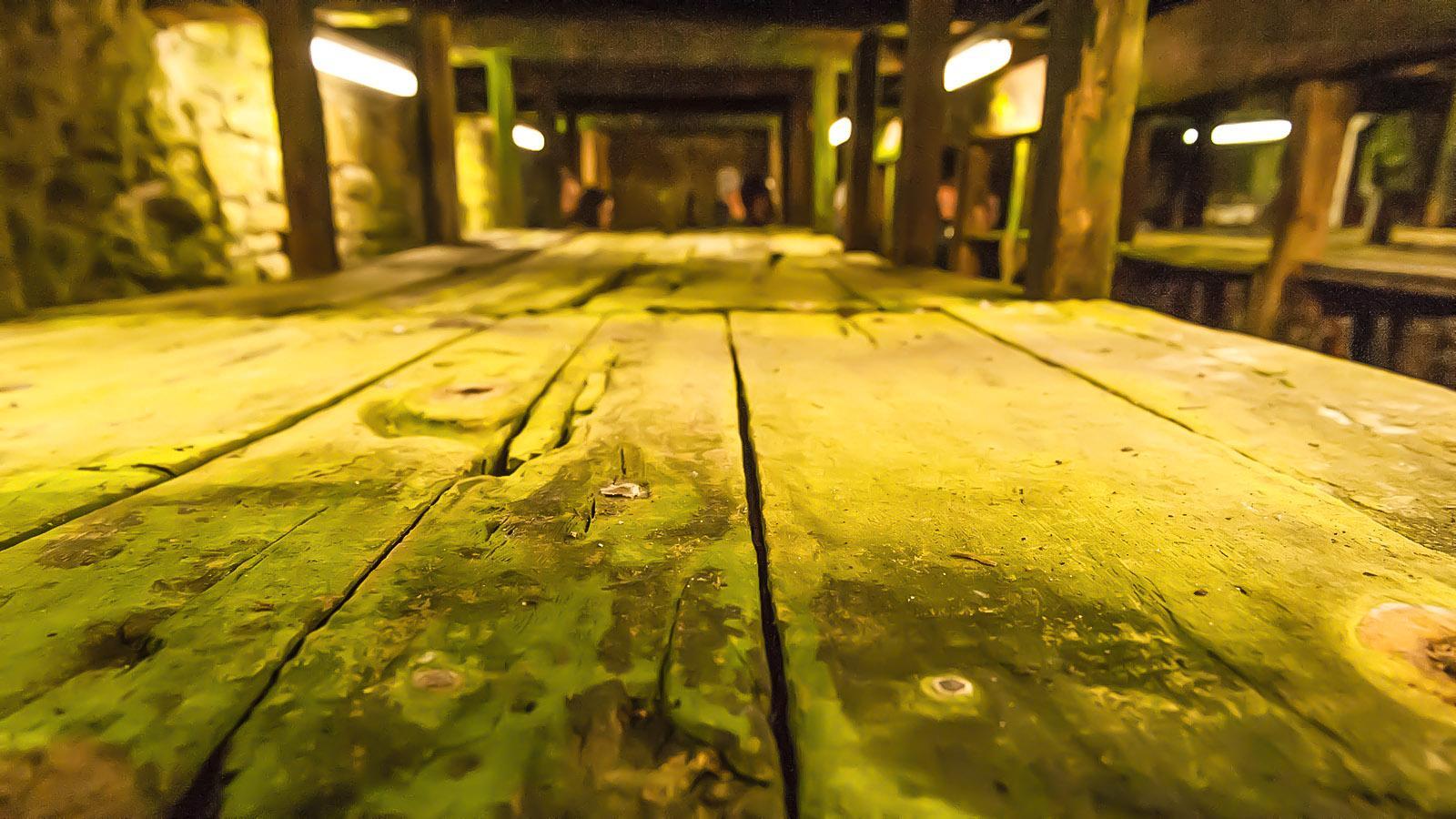 Wer zu falschen Zeit kommt, erblickt wie ich nur leere Regale in den Roquefort-Kellern. Foto: Hilke Maunder