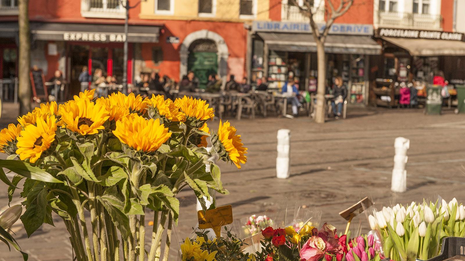 Rund um die Markthalle von Grenoble verbreitet die Stadt ein unvergleichliches Flair. Foto: Hilke Maunder
