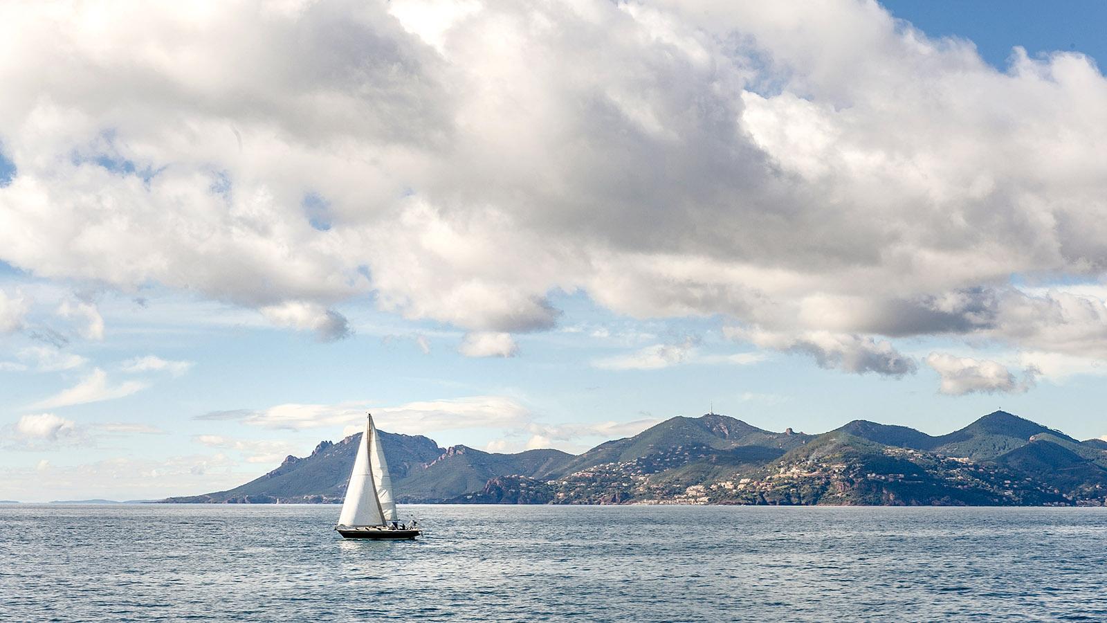 Die Bucht von Cannes mit dem Esterel-Gebirge. Foto: Hilke Maunder