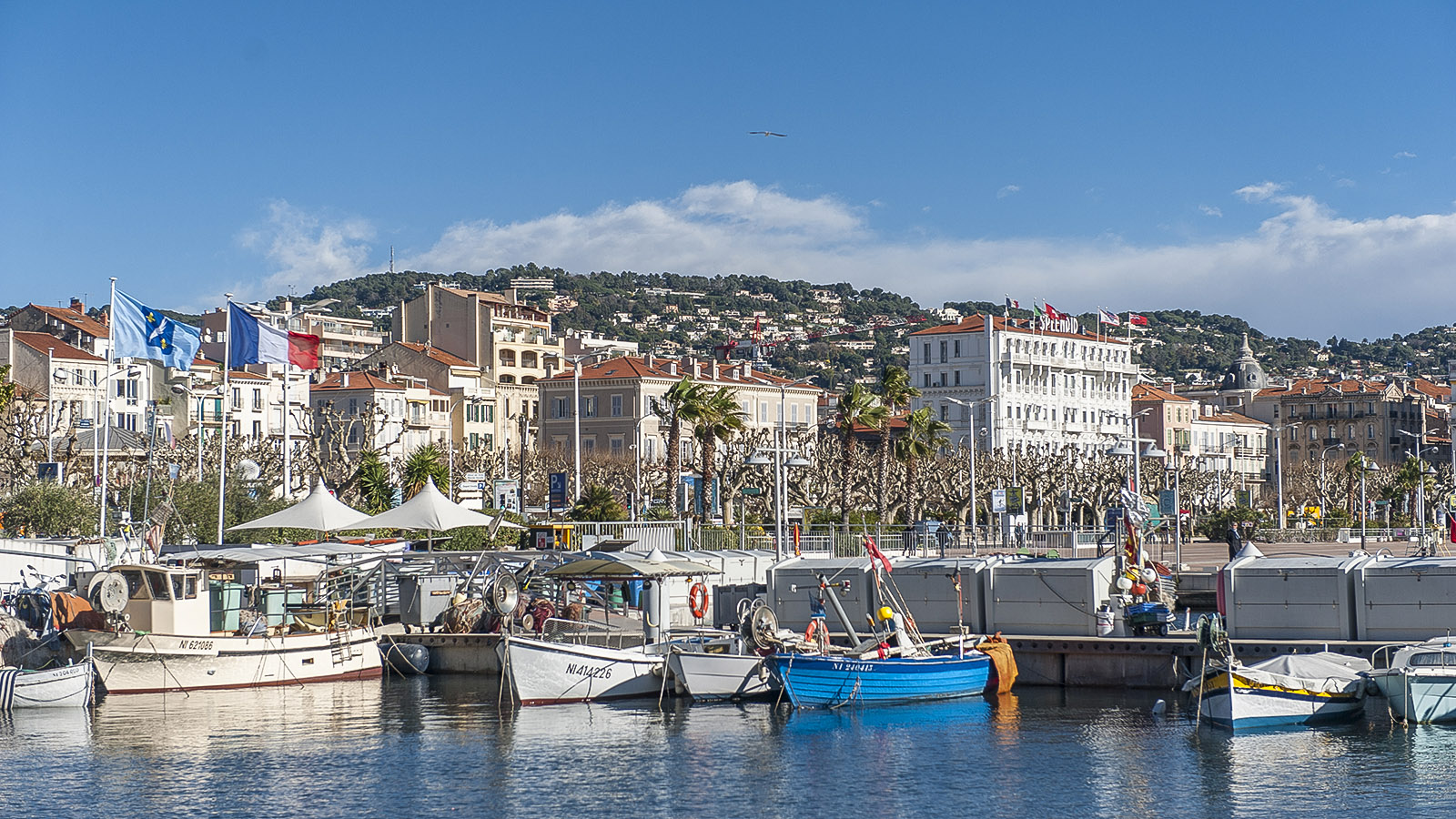 Der Vieux-Port von Cannes. Foto: Hilke Maunder