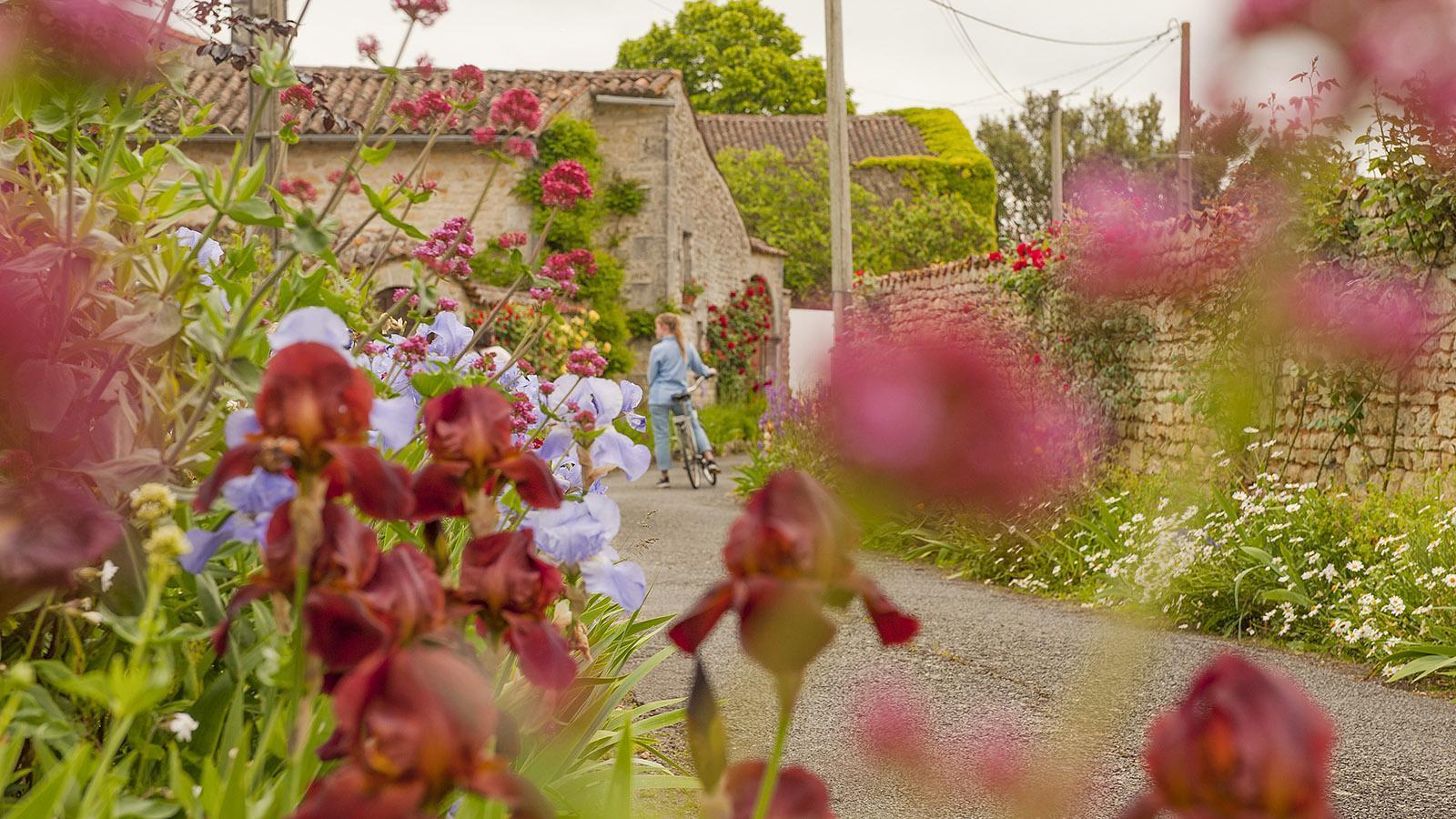 Bourg-Charente. Rue des Fleurs. Foto: Hilke Maunder