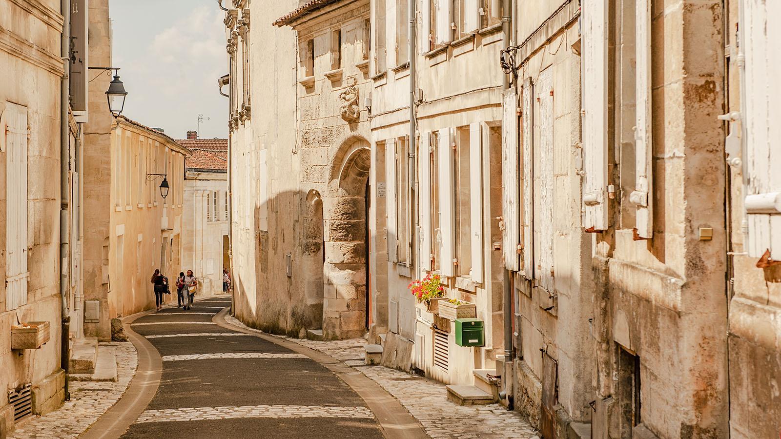 Cognac. Foto: Hilke Maunder
