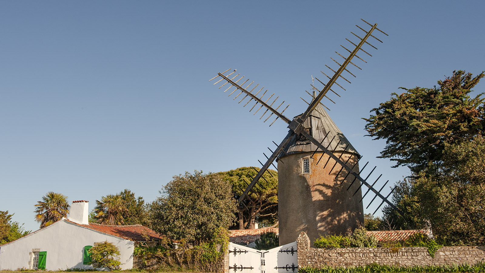 Beim Radfahren kommt ihr auch an Windmühlen wie dieser vorbei – sie steht im Süden der Île de Ré. Foto: Hilke Maunder
