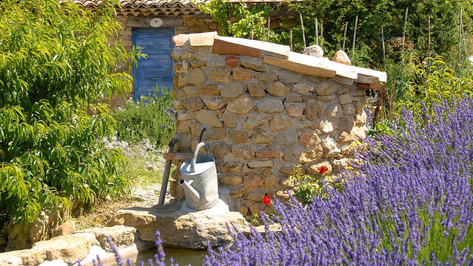 Lavendel-Traum in der Drôme. Foto: Hilke Maunder