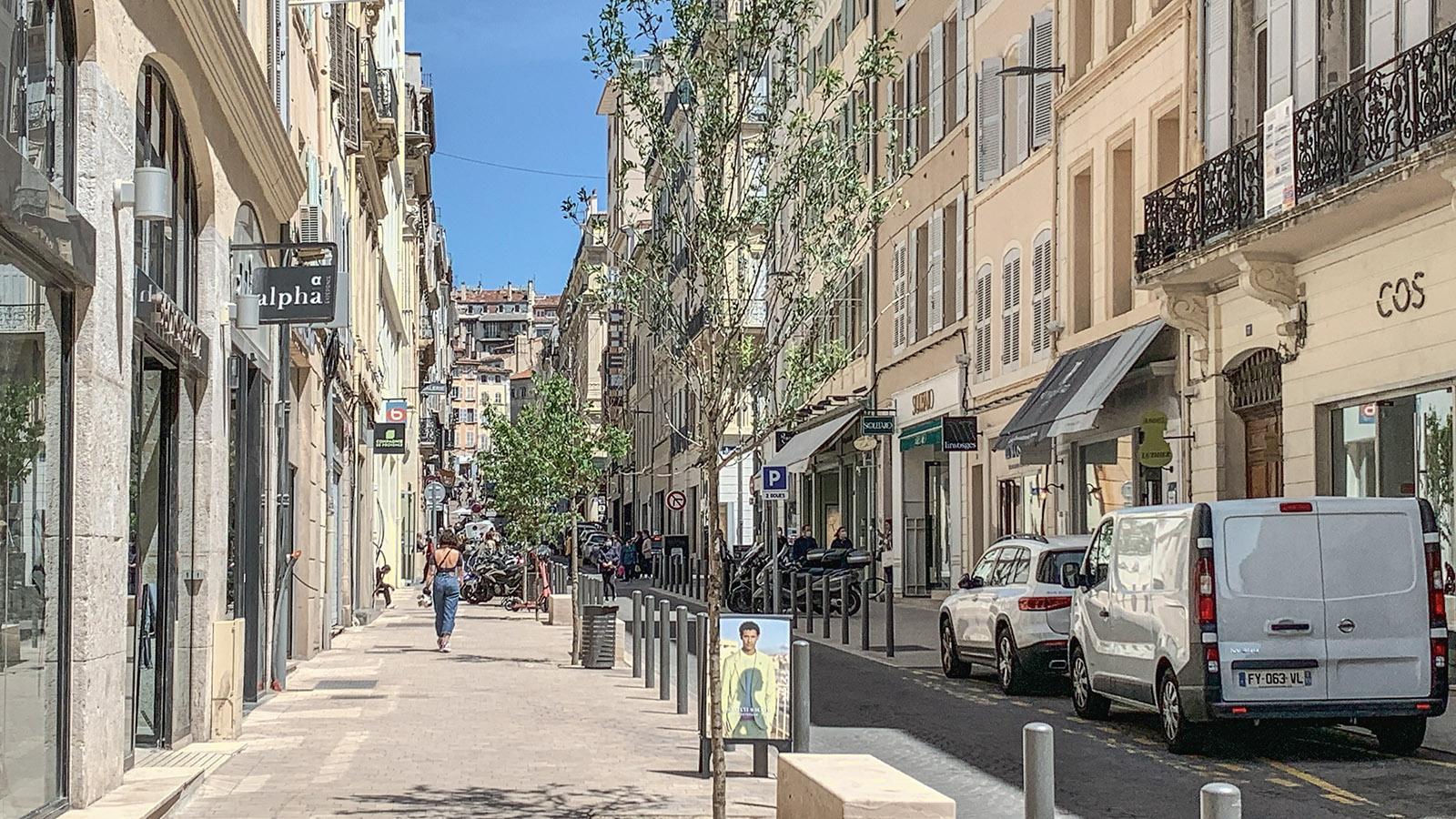 Frisch gepflanzt: die Bäume der Rue Francis Davso, einer schicken Einkaufsstraße in Marseille. Foto: Hilke Maunder