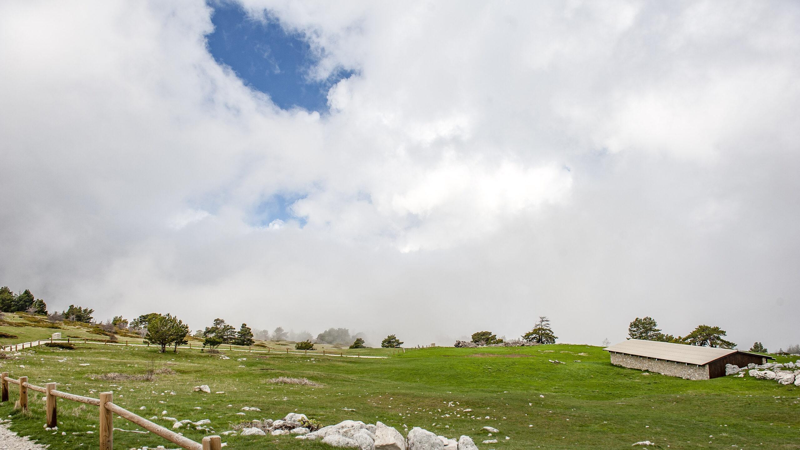 Die Bergerie de l'Avocat unterhalb des Gipfels des Mont Ventoux. Foto: Hilke Maunder