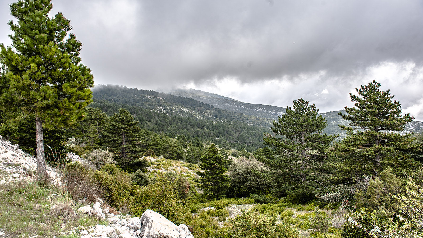 Am Mont Ventoux ändert sich auch im Sommer das Wetter blitzschnell. Foto: Hilke Maunder