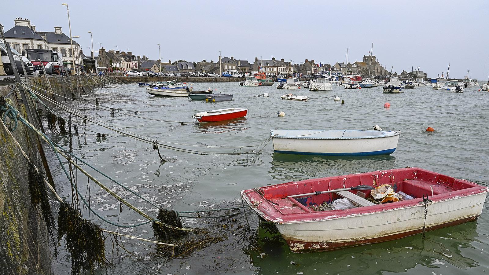Cotentin: Barfleur. Foto: Hilke Maunder
