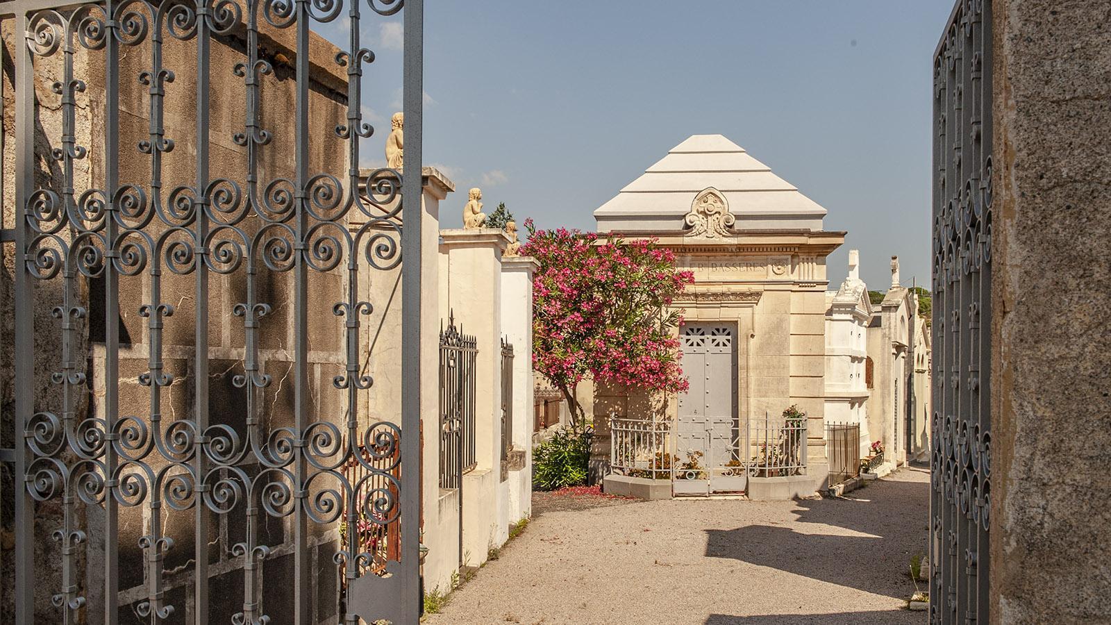 Der Friedhof von Banyuls. Foto: Hilke Maunder