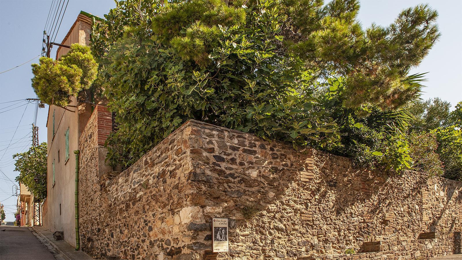 Banyuls. Ehemaliges Anwesen von Maillol. Foto: Hilke Maunder