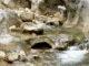 Die Kraft des Wassers hat den Stein ausgehöhlt. Foto: Hilke Maunder