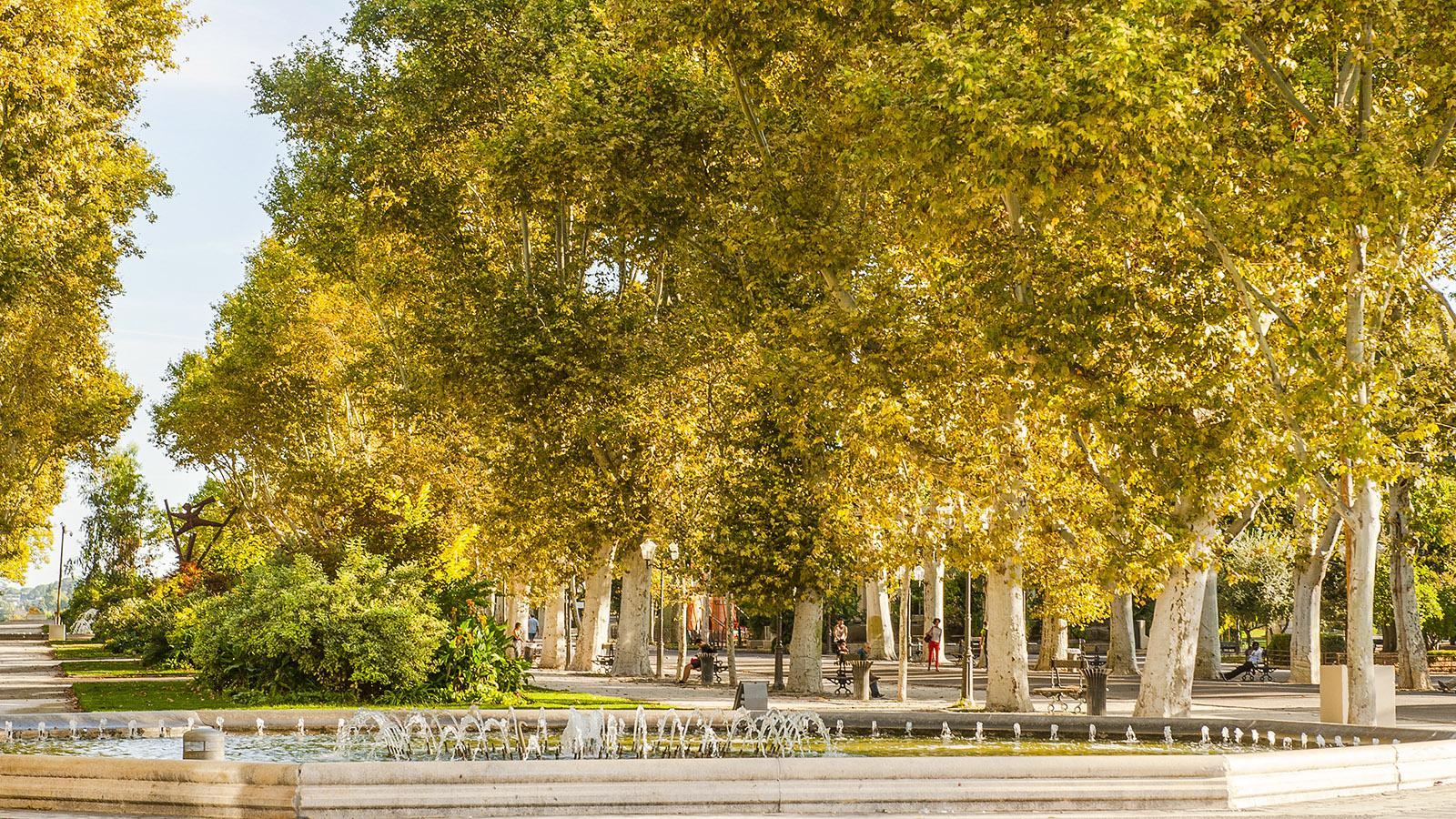 Montpellier: Esplanade Charles de Gaulle. Foto: Hilke Maunder
