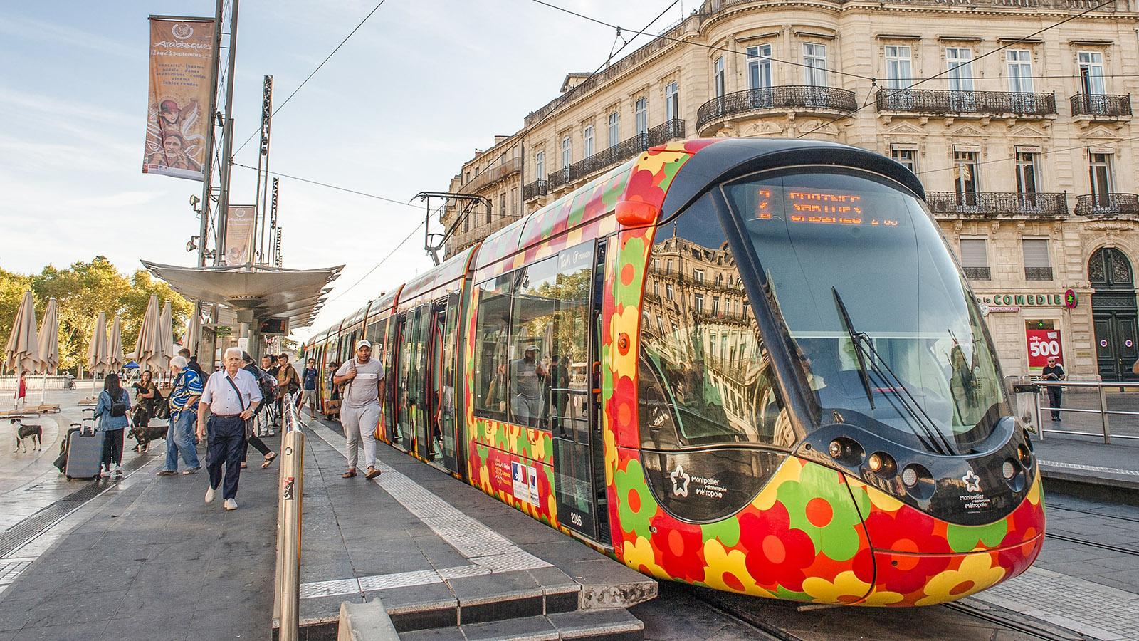 Montpellier: Tram-Linie 2. Foto: Hilke Maunder