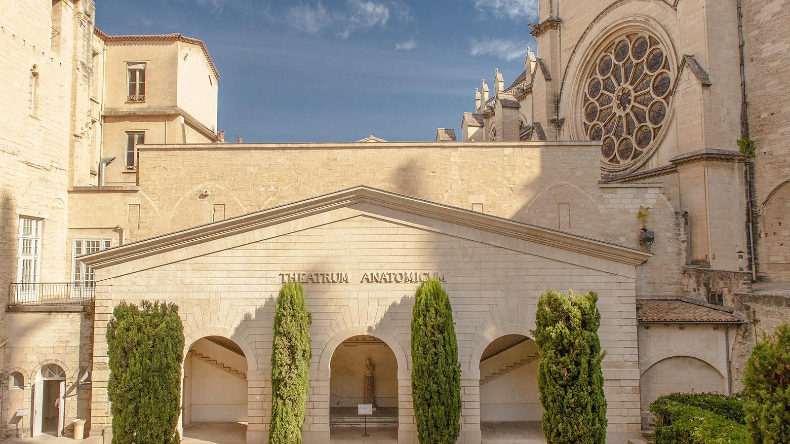 Die medizinische Uni von Montpellier. Foto: Hilke Maunder