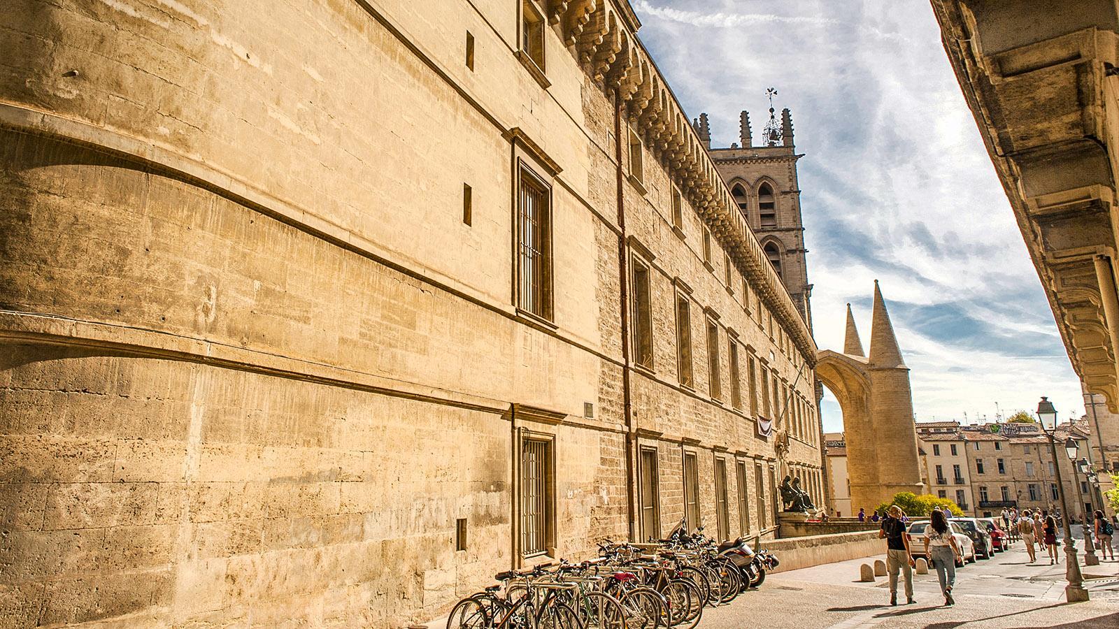 Montpellier: Rue de la Médicine. Foto: Hilke Maunder
