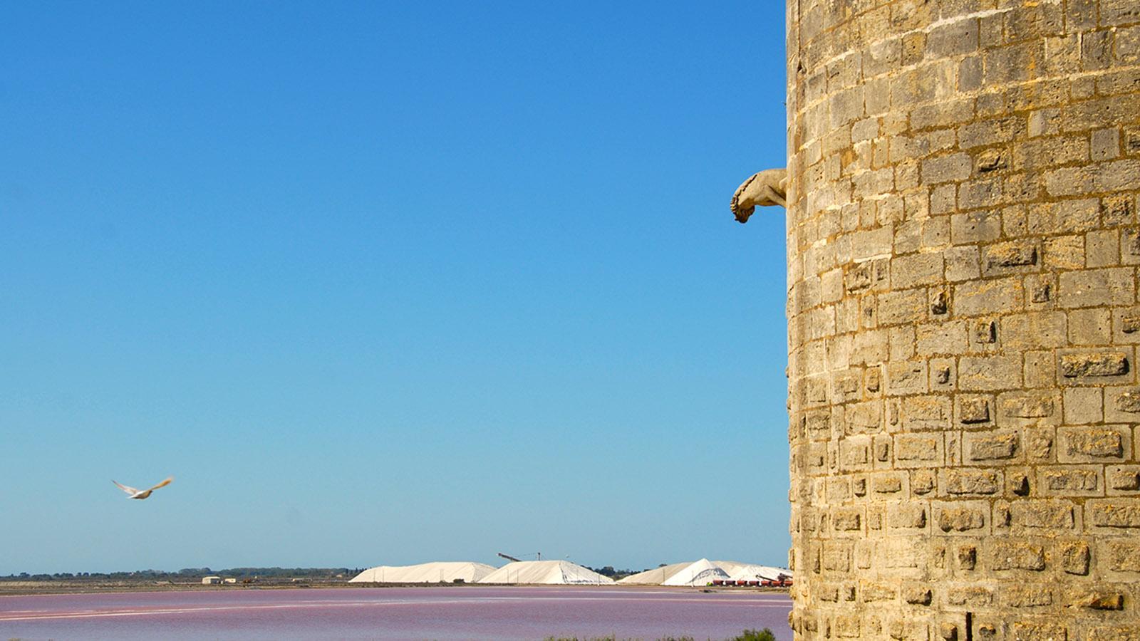Aigues-Mortes, Blick von der Stadtmauer auf die Saline du Midi (Salzgewinnung). Foto: Hilke Maunder