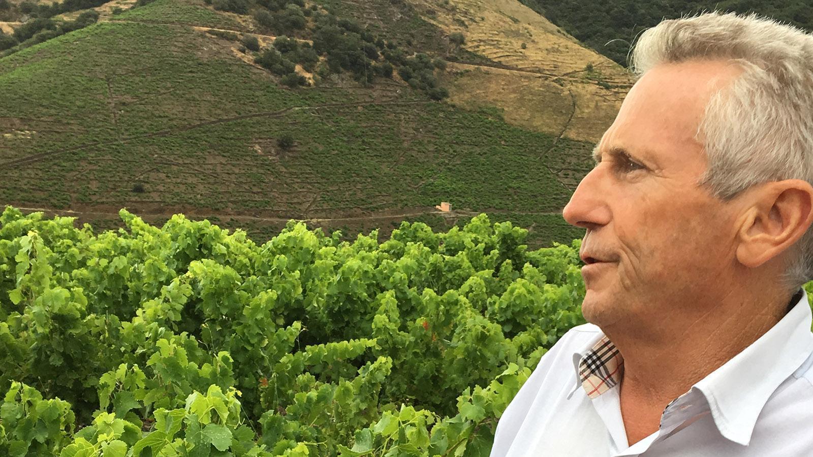 Jean-Michel Solé, Bürgermeister von Banyuls, in den Weinbergen der Côte Vermeille. Foto: Hilke Maunder
