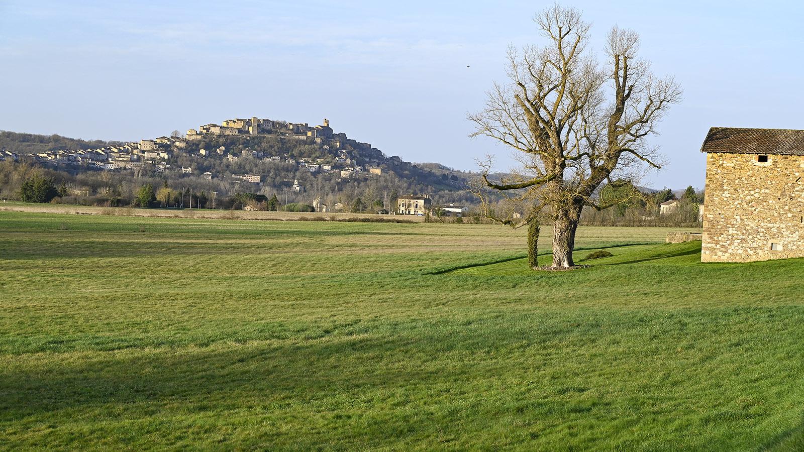 Aus der Ebene erhebt sich die Bastide von Cordes-sur-ciel auf einem Felskegel. Foto: Hilke Maunder
