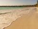 Île des Pins: Traumstrand mit Araukarien: die Baie de Kuta. Foto: Hilke Maunder
