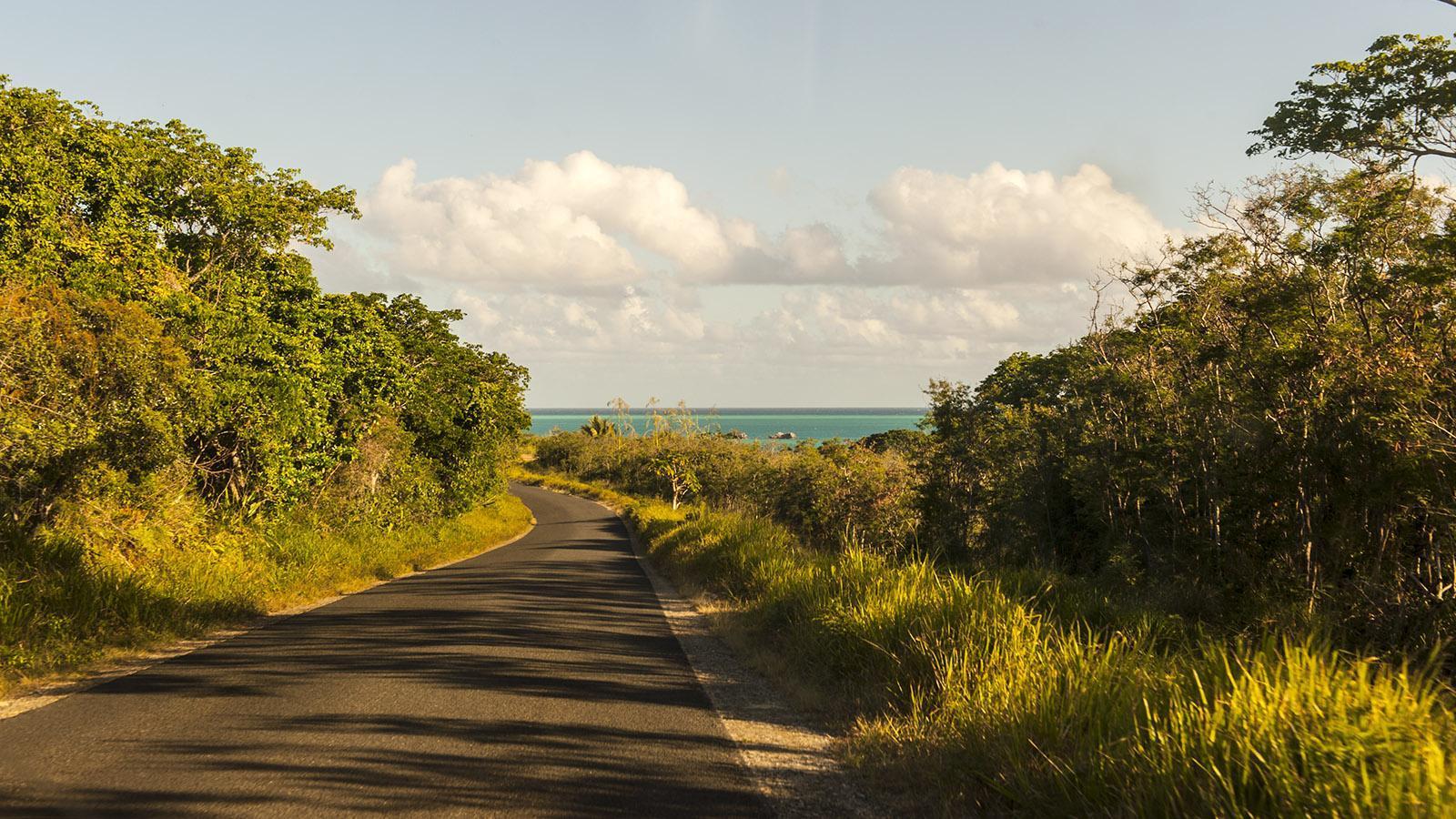 Die Straßen auf der Île des Pins sind gut ausgebaut. Foto: Hilke Maunder