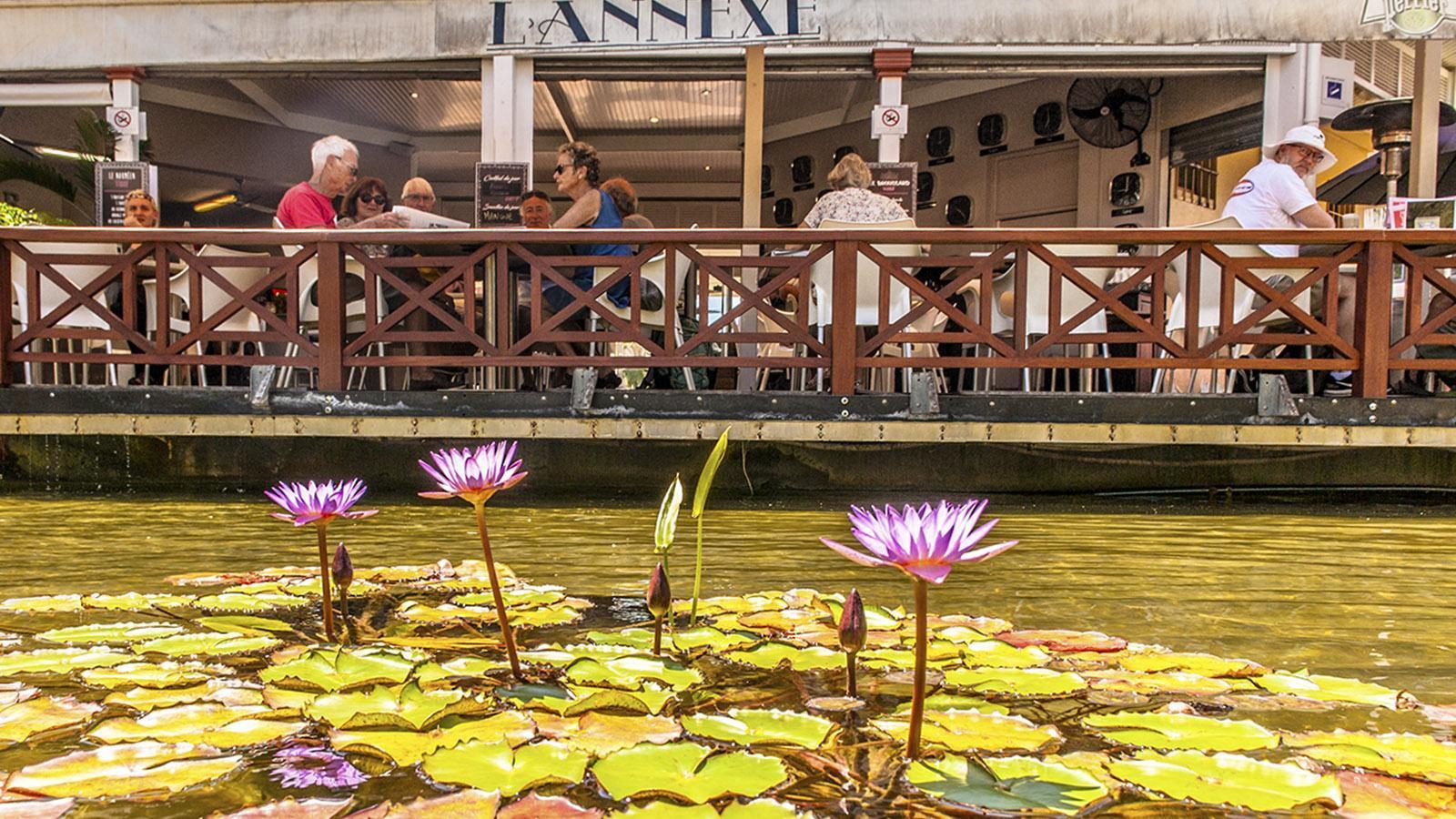 Nouméa: L'Annexe, ein charmantes Lokal am Place des Cocotiers. Foto: Hilke Maunder