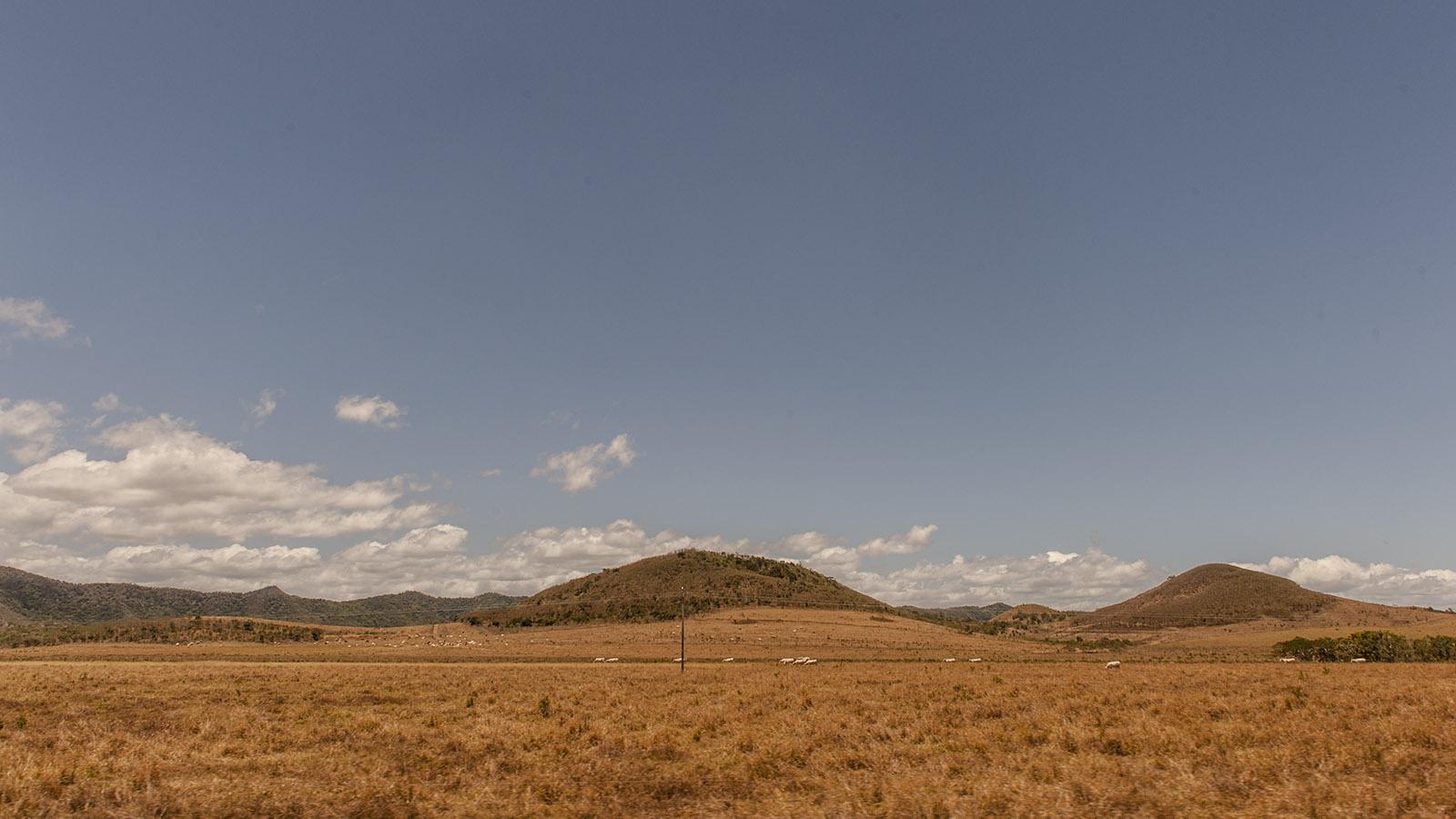 Wilder Westen: Rinderland: die Westküste von Grande-Terre. Foto: Hilke Maunder