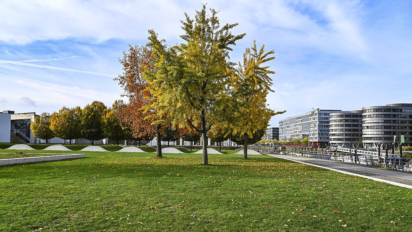 Duisburg, Garten der Erinnerung. Foto: Hilke Maunder