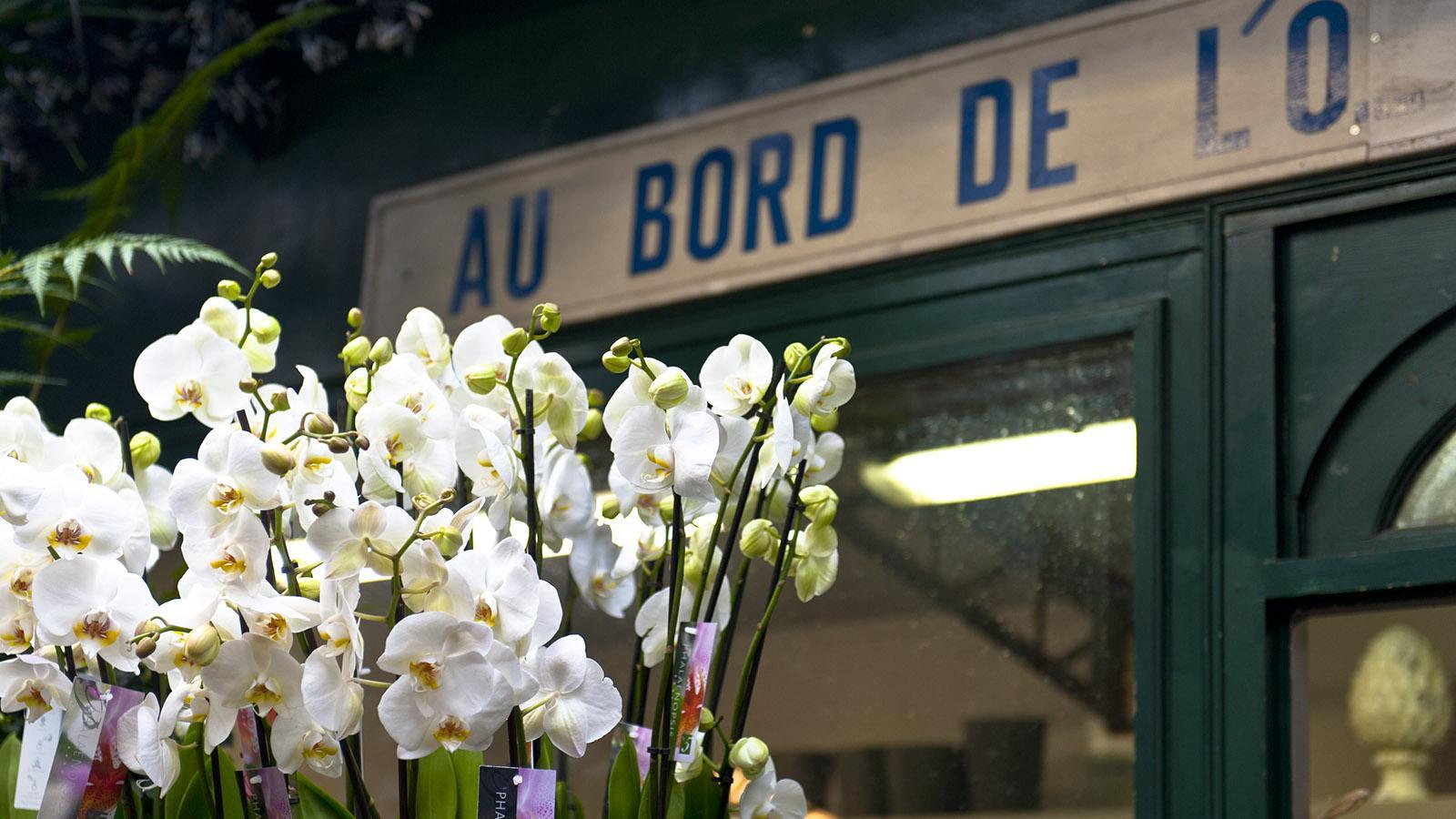 Îl e de la Cité: Blumenmarkt. Foto: Hilke Maunder