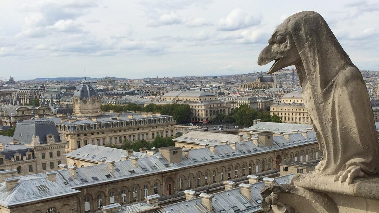 Wasserspeier auf dem Dach der Kathedrale Notre-Dame de Paris. Foto: Lara Maunder