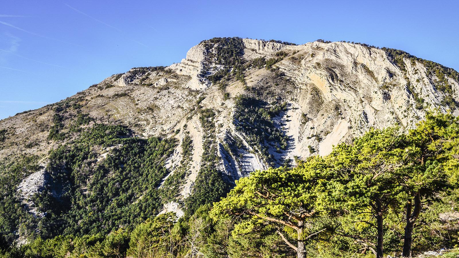 Haute-Provence: Vallon de Nans. Foto: Hilke Maunder