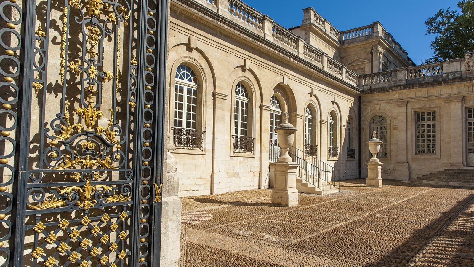 Avignon: Musée Calvet. Foto: Hilke Maunder