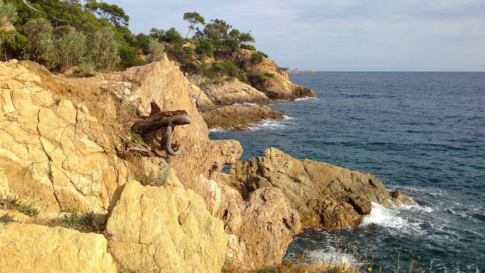 Saint-Tropez: Strand und Fels wechseln sich ab auf dem Sentier Littoral. Foto: Hilke Maunder