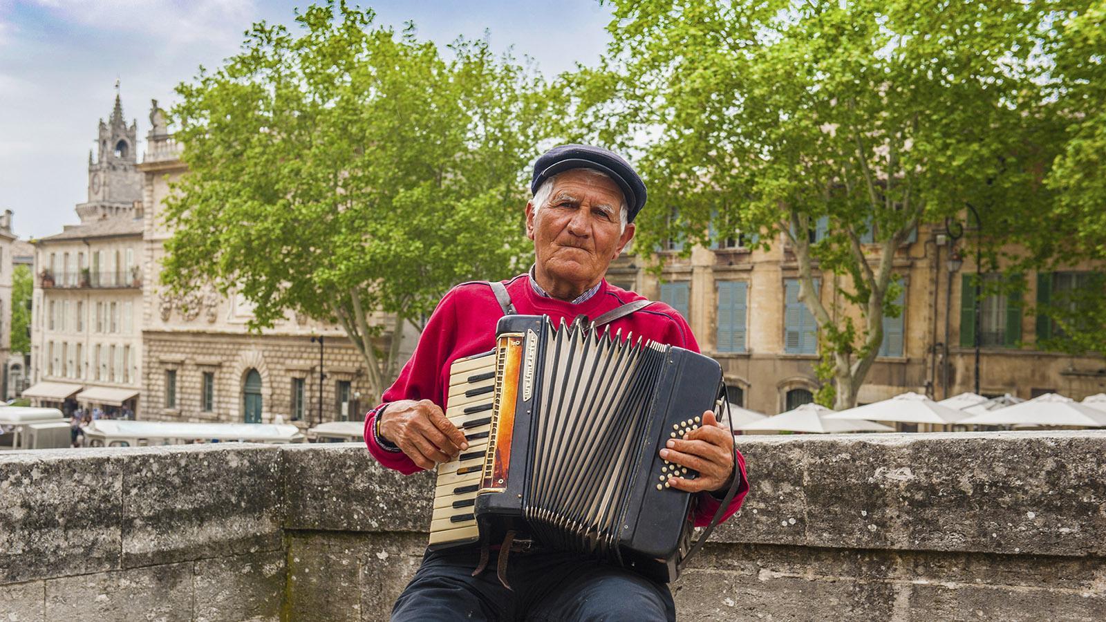 Avignon: Avignon: So seht ihr die Stadt von der berühmten Brücke! Foto: Hilke Maunder