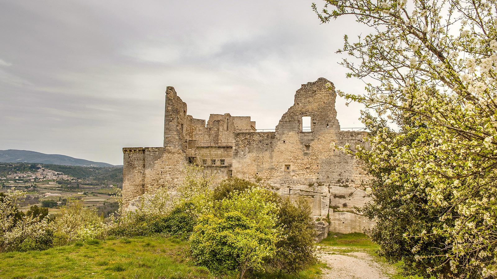 Luberon: Die Burg von Lacoste ist zum Großteil eine Ruine.Foto: Hilke Maunder