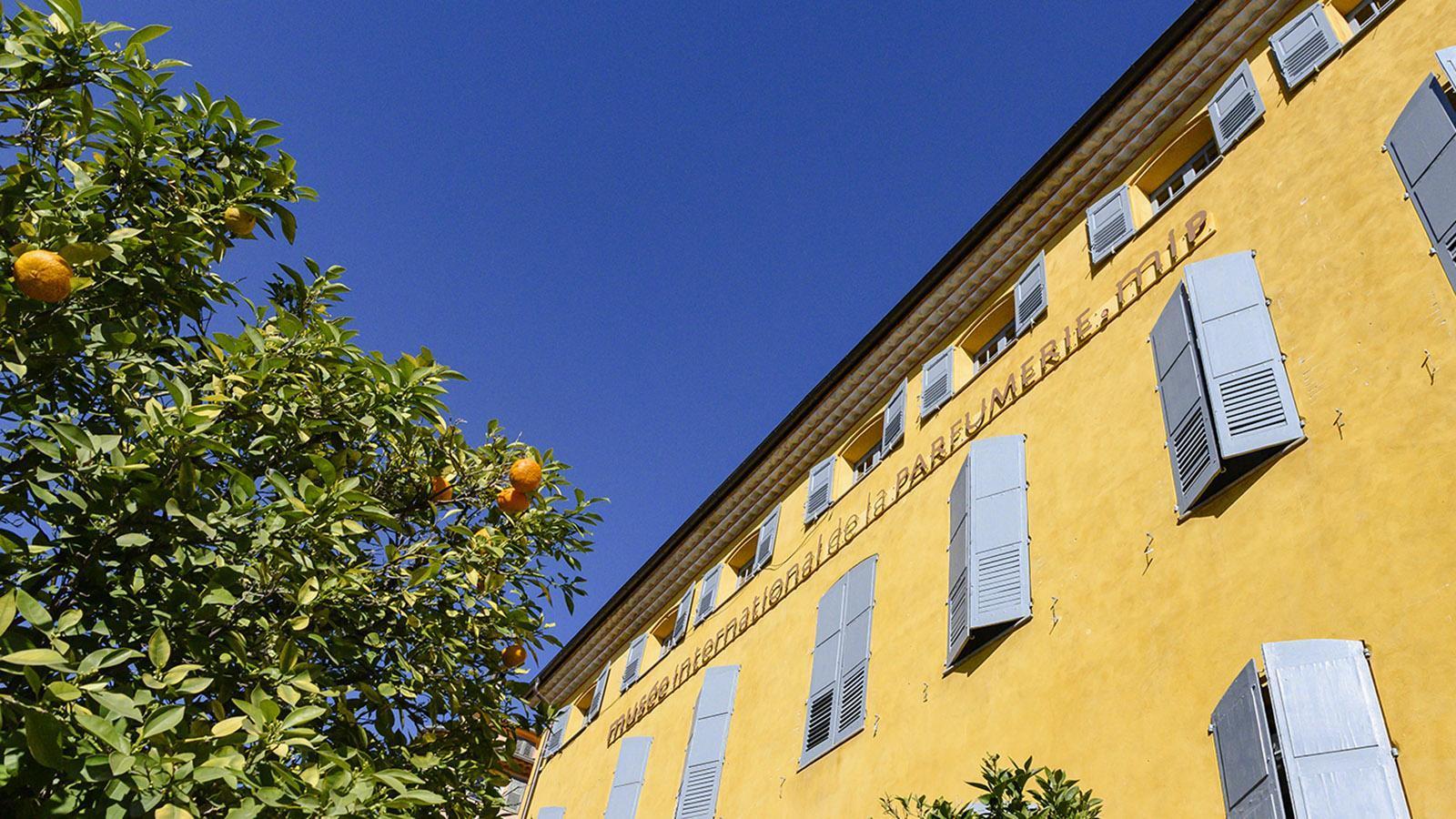 Das internationale Parfümerie-Museum von Grasse. Foto: Hilke Maunder