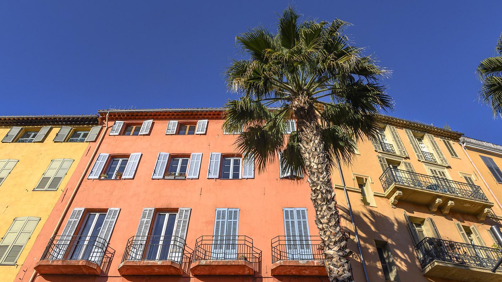 Sonnengelb und Ockerrot: die Fassaden von Grasse künden vom Süden - und dem nahen Italien. Foto: Hilke Maunder