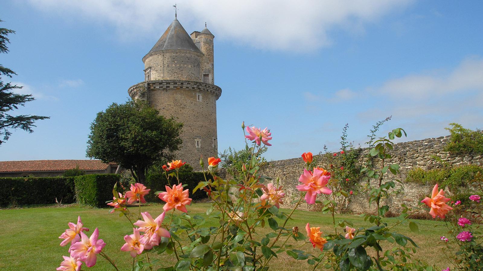 Das Schloss von Apremont. Foto: Hilke Maunder
