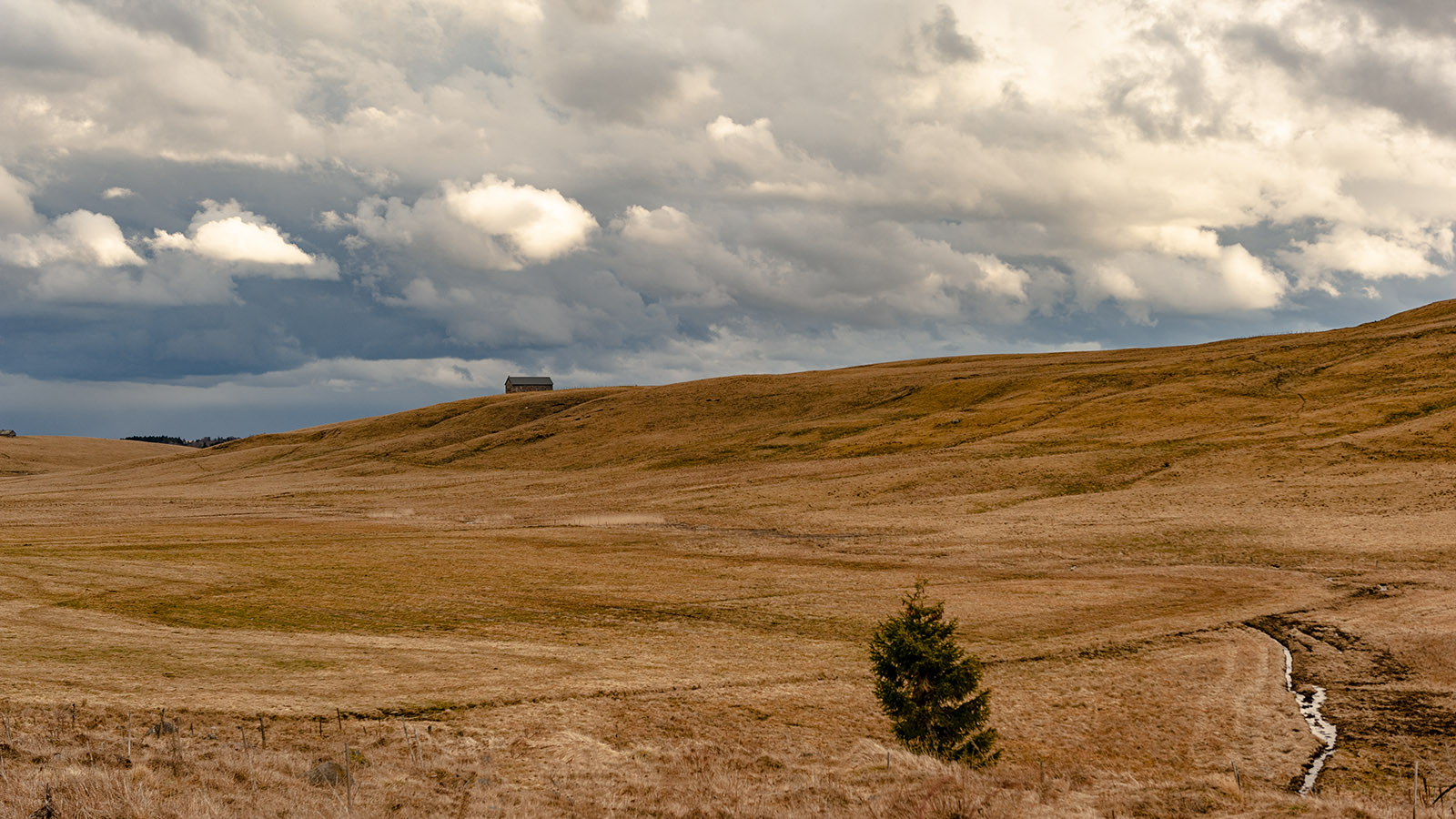 Diagonale vide: Im Cantal bei Ségur-les-Villas. credits_Hilke Maunder