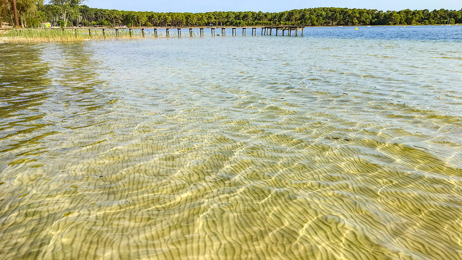 Diagonale du Vide: Der Lac d'Hourtin bei Carcans. Foto: Hilke Maunder
